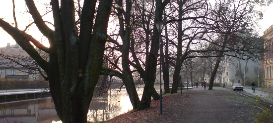 Uppsala, november 2008